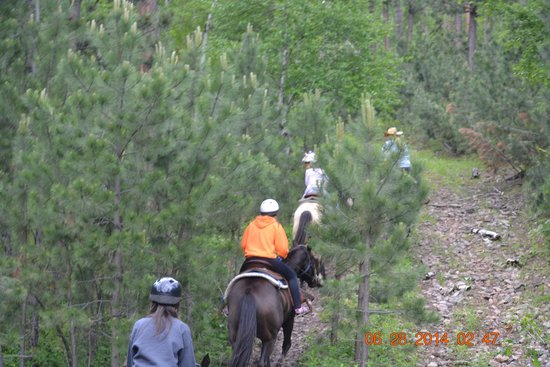Blacktail Horseback and Walking Tours : Up the Mountain