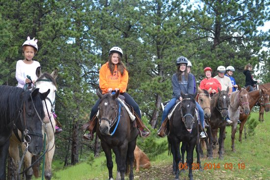 Blacktail Horseback and Walking Tours : Up on Top