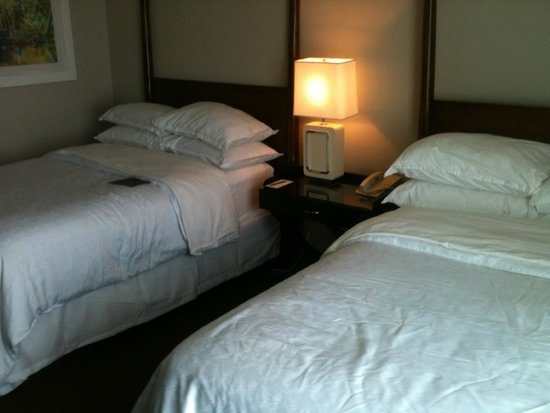 Sheraton Suites Cypress Creek Ft. Lauderdale: beds