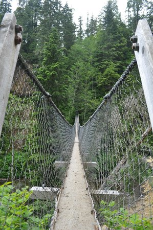 West Coast Trail: Logan Creek Suspension bridge