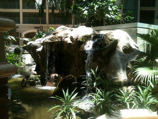 Sheraton Suites Cypress Creek Ft. Lauderdale: waterfalls