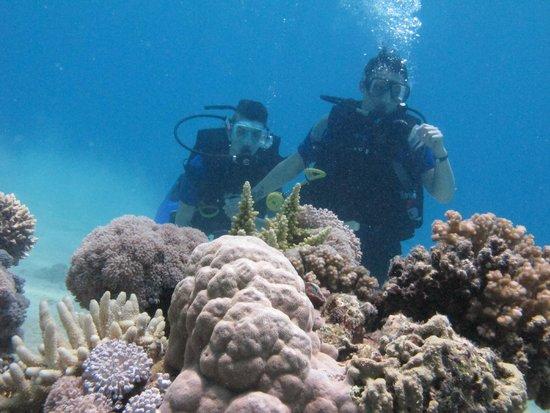 Le Royal Holiday Resort: diving
