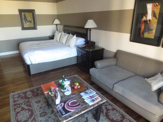 InterContinental Hotel Buenos Aires: Vista de mi habitaciòn, la nro. 1714
