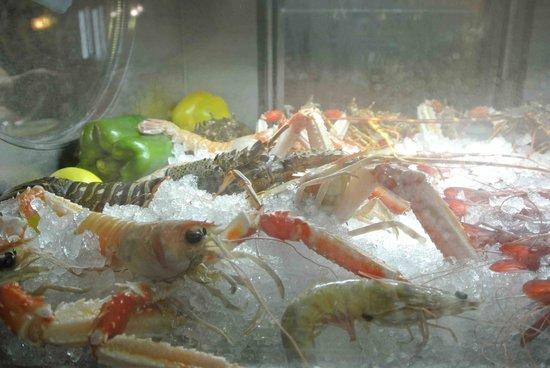 Civera Marisquerias : Fresh Seafood