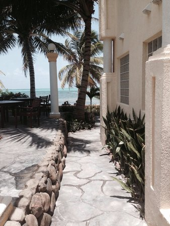 Pelican Reef Villas Resort: Side of the rooms and pool with a taste of the western Caribbean Sea !