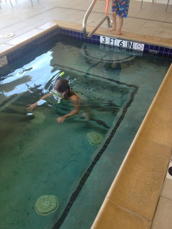 Homewood Suites Fort Worth West at Cityview: Hot tub snorkeling