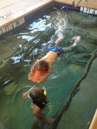 Homewood Suites Fort Worth West at Cityview: Kids love this pool and hot tub