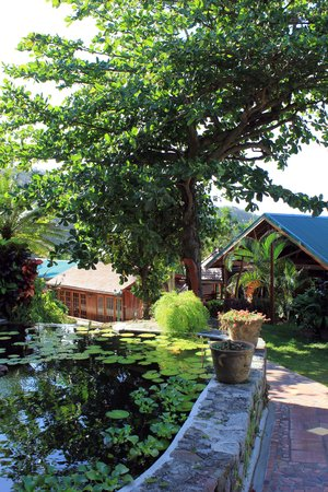 Ladera Resort: Water features all round the hotel grounds