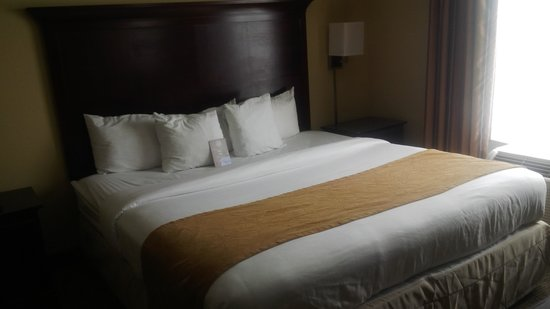 Comfort Suites Sawgrass: King sized bed