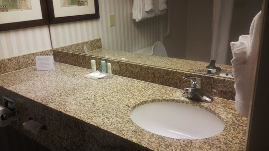 Comfort Suites Sawgrass: Bathroom counter top