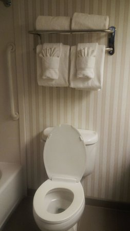 Comfort Suites Sawgrass: Bathroom toilet