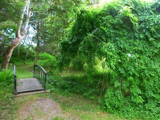 Achill Secret Garden: A home made for fairies :)