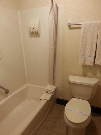 Dynasty Suites Redlands: bathroom