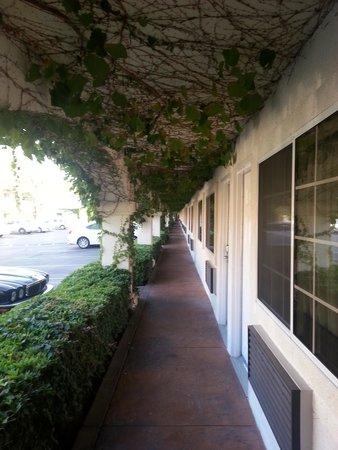 Dynasty Suites Redlands: External entrance to rooms