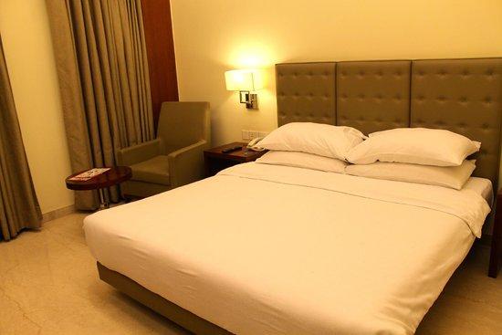 The Hans New Delhi : Room