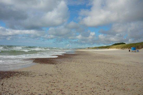 Nida Beach: Plaża