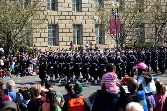 Washington Marriott at Metro Center : Cherry Blossom Parade