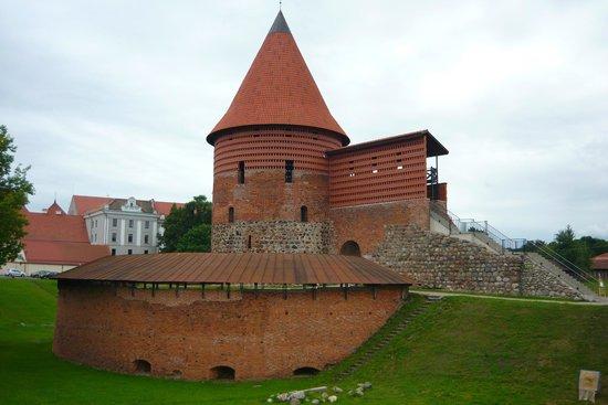 Kaunas Castle: Zamek