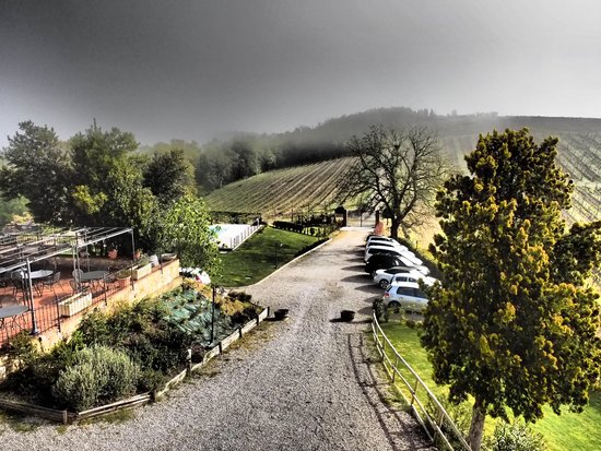 Agriturismo La Lucciolaia: from our room on a foggy morning