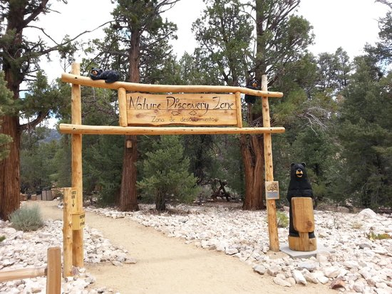 Big Bear Discovery Center: Nature Discovery Zone for kids