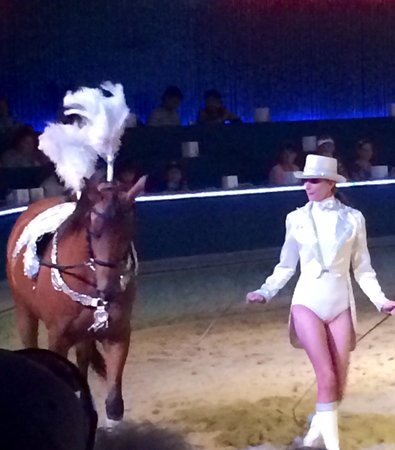 The Dancing Horses Theatre: These horses are incredible