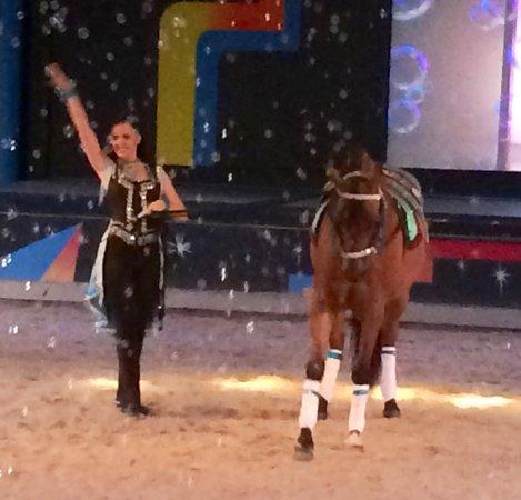 The Dancing Horses Theatre: Cute!