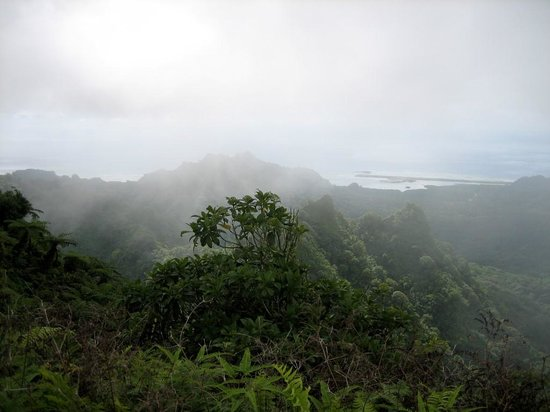 Kosrae Village Ecolodge & Dive Resort: View from the Top of Finkol