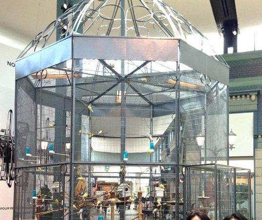 Atrium birdcage Picture of Carrefour Laval Laval TripAdvisor