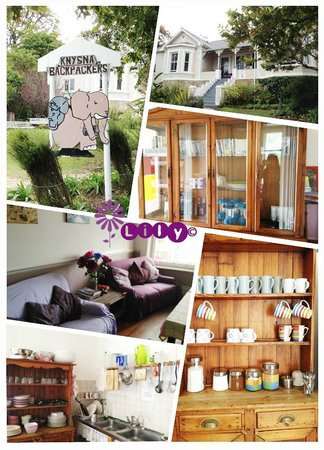 Knysna Backpackers: Outside and common area