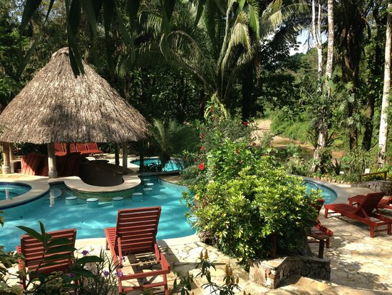 Ian Anderson's Caves Branch Jungle Lodge: Yes, this is in the middle of the jungle!