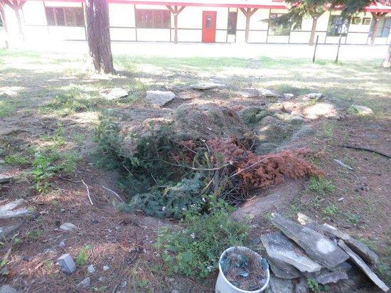 Northern Pine Inn: More garbage