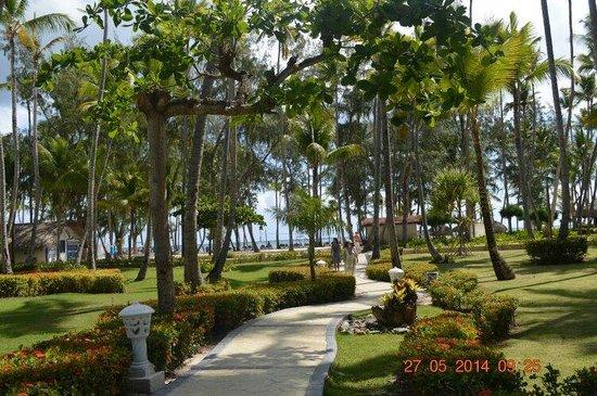 Vista Sol Punta Cana : Mi trayecto desde la habitación hasta la Playa !