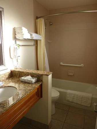 BEST WESTERN PLUS A Wayfarer's Inn and Suites: Bathroom
