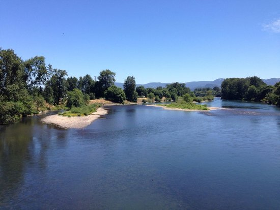 Willamette River bike trail: Looking north from the Owosso Bike Bridge