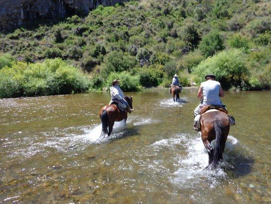 Cabalgatas & Aventura ArianePatagonia : Passagem pelo rio!!!