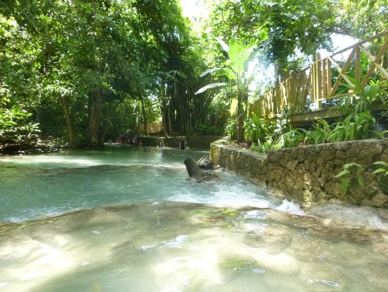 Dunn's River Falls and Park: One of the pools