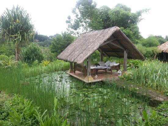 Moon Garden Tagaytay: One of the Cabanas in their lily ponds