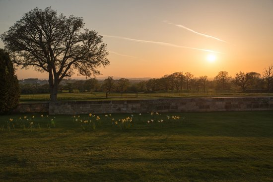 Ellenborough Park : Hotel grounds at sunset