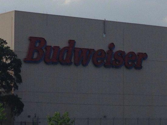 Budweiser Brewery Tours : Budweiser