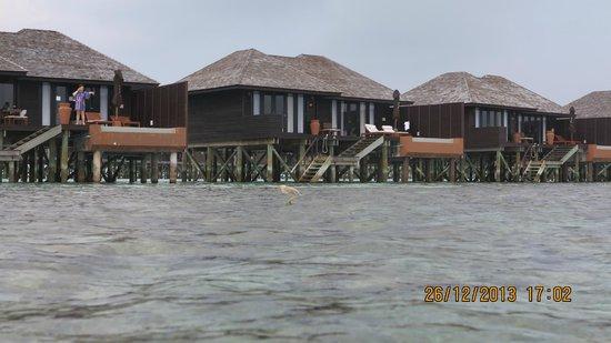 Lily Beach Resort & Spa. Водные виллы.