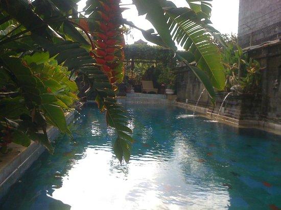 Restu Bali Hotel: pool area