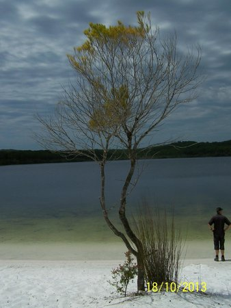 Fraser Experience Tours: Lake McKenzie