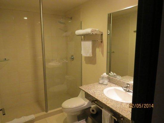 Novotel Panamá City: Baño