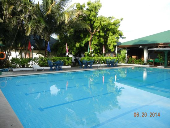 Another Pool Shot Picture Of Coconut Grove Beach Resort Bauang Tripadvisor