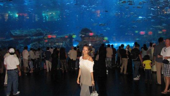 Dubai Aquarium & Underwater Zoo: Аквариум