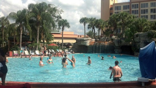 Radisson Resort Orlando-Celebration : Great place to stay!
