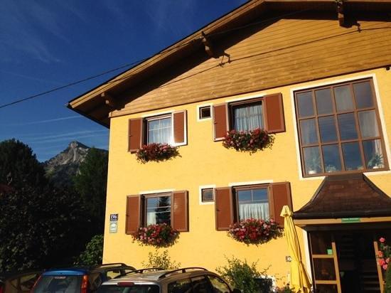 Haus Steiner: Alpine view!