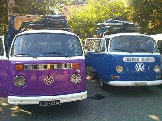 Rapture Surfcamp Bali: rides