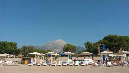 Larissa Club Saphire Hotel: Пляж.Всем хватало мест.Чисто.Песок и галька.