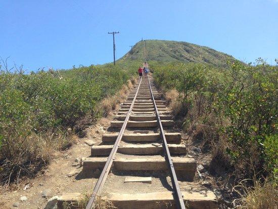 Koko Crater Railway Trail: 半分は来たかな?
